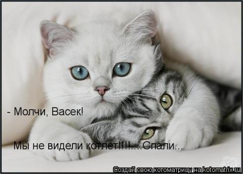 Молчи, Васёк! - Ольга Владимировна Назарова