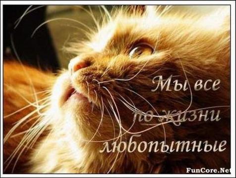 Портрет - настя Юрьевна Багрева