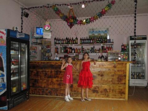 Я в ресторане на свадьби брата - Виктория Павловна Чернышева