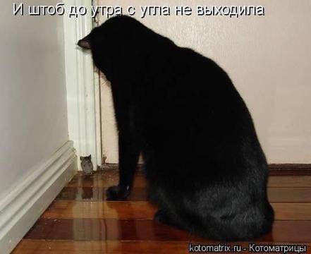 В углу - Ольга Владимировна Назарова
