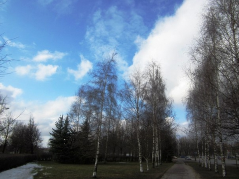 Весна . Апрель.