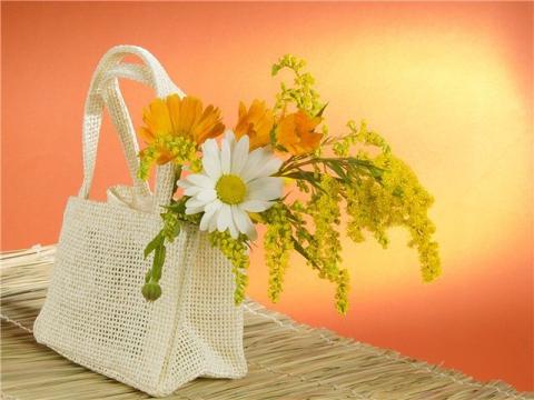 цветы в сумке - Ольга Сергеевна Теплоухова