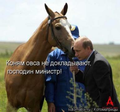 Не доложили))))) - Ирина Валентиновна Ермакова
