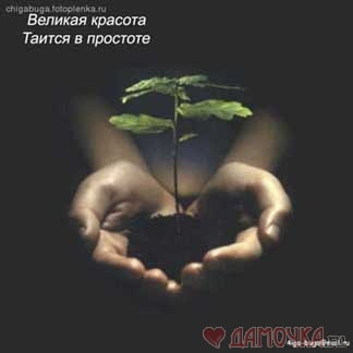 Простота - Ольга Сергеевна Теплоухова