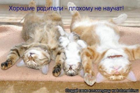 Хорошие родители плохому не научат! - Ольга Владимировна Назарова