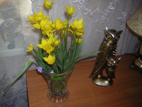 21.04.2012. Первые тюльпаны. Вечером.