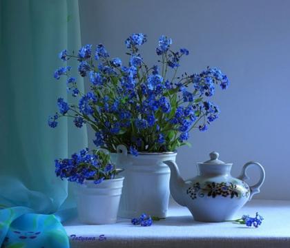 Синие цветы - Ольга Сергеевна Теплоухова