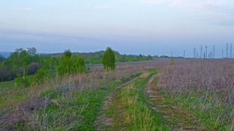 Широкий пейзаж поле лес ЛЭП - Александр Владимирович Серолапкин