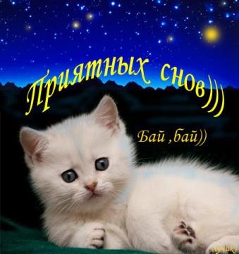 приятных снов - Людмила Павловна Путилина