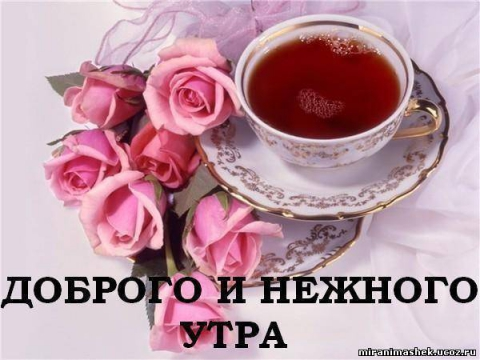 Доброго и нежного утра