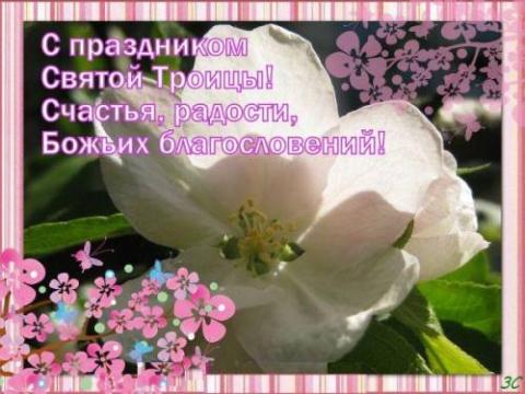 Без названия - Ольга Николаевна Таганова
