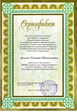 Сертификат участника - Татьяна Николаевна Долгих