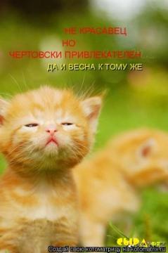 Не красавец, но чертовски привлекателен... - Мадина Ганиятулловна Салимова