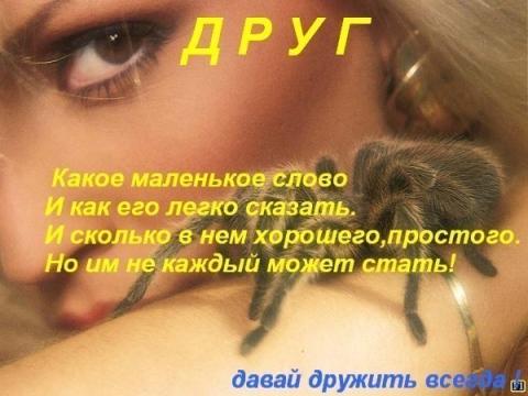 ДРУГУ - Ольга Сергеевна Теплоухова